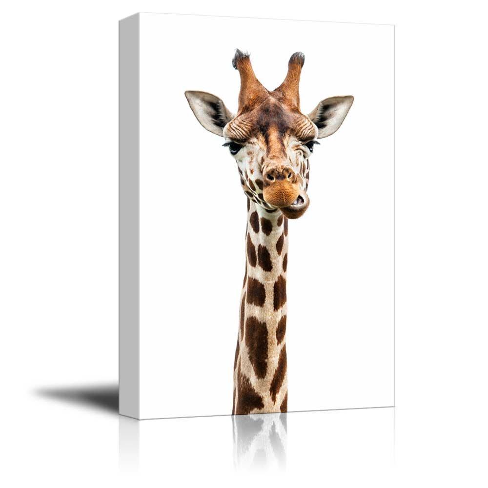 Giraffe Making A Face - Canvas Art