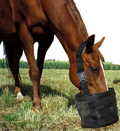 Top 9 best horse feeder bag: Which is the best one in 2020?