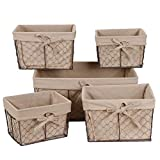 F2C Home Decor Set of 5 Vintage Toy Fruit Clothes Metal Chicken Wire Storage Basket Organizer W/Removable Fabric Liner for Bathroom Kitchen Office Nursery Laundry Bedroom Shelf