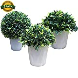 Shareculture 3 Pack Artificial Plants Plastic Fake Tree Potted Plants Green Decorative Artificial Topiary Tree Ball Plants Home Decor