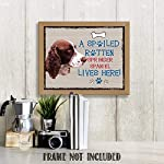 "Springer Spaniel-Dog Poster Print-10 x 8"" Wall Decor Sign-Ready To Frame.""A Spoiled Rotten Springer Spaniel Lives Here"". Pet Wall Art for Home-Kitchen-Garage. Gift-English Springer Spaniel Owners! 6"