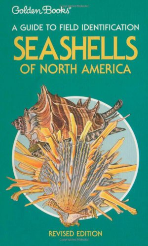 Golden Shell - Seashells of North America: A Guide to Field Identification