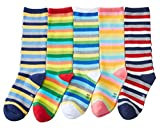 Qcomfyhouse Fun Rainbow Stripes Knee High Socks for Girls 5 Pairs