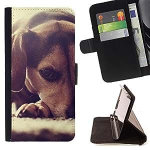 KingStore / Leather Etui en cuir / LG Nexus 5 D820 D821 / Perrito del beagle Peque?o Perro raposero