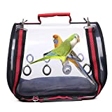 Black with Bowl Lucky Youth Bird Carrier Backpack,Bubble Bird Travel Carrier Backpack Transparent Pet Backpack Parrot Bag Breathable Bird Cage Pet Space Bags