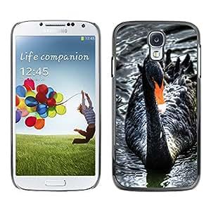 Qstar Arte & diseño plástico duro Fundas Cover Cubre Hard Case Cover para SAMSUNG Galaxy S4 IV / i9500 / i9515 / i9505G / SGH-i337 ( Black Swan Water Beak Cute Bird Ornithology)