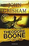 Theodore Boone : dalla parte giusta