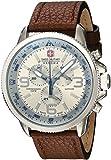 Swiss Military by Hanowa Men's Watches 06-4224.04.030