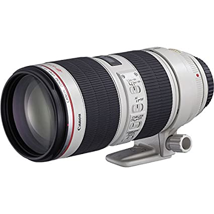 Review Canon EF 70-200mm f/2.8L