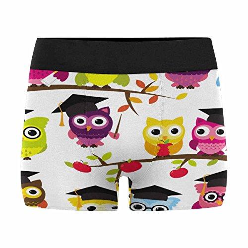 INTERESTPRINT Mens Boxer Briefs Underwear Owl Pattern XS-3XL