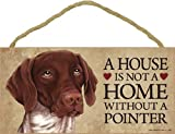A house is not a home without German Shorthaired Pointer - 5