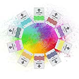 10 Colors x 100g Each - Holi Color Powder, 10 Natural Pigments for Gender Reveal, Color Runs, Color Wars, Rangoli, Gulal - Blue, Red, Orange, Yellow, Green, Pink, Purple Powders (100g Each)