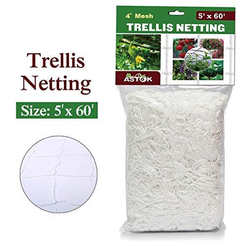(Vlesgo Trellis Netting,Heavy-duty Polyester Plant Trellis Netting Soft Crop Netting, Flexible String Garden Net Climbing, Fruits, Vegetables Flowers-White,1 Pack (5'x 60'))
