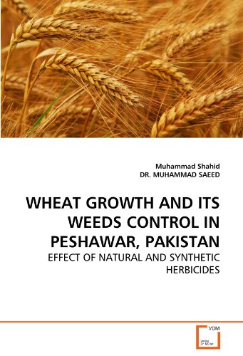 wheat-growth-and-its-weeds-control-in-peshawar-pakistan-effect-of-natural-and-synthetic-herbicides