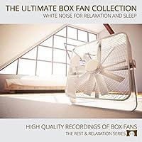Air Circulator Fan on High Speed (White Noise)