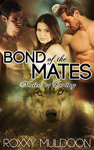 Erotic novels about threesome