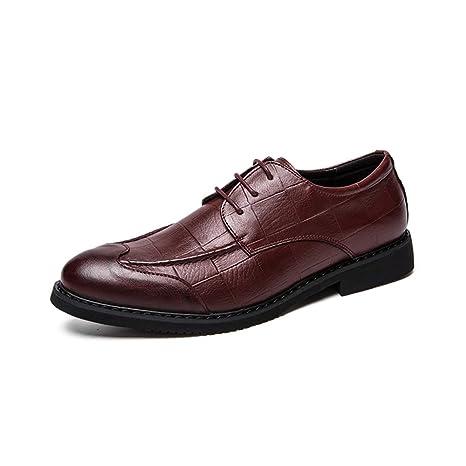 Ofgcfbvxd Mocasines Planos Casuales para Hombres Moda Oxford Classic Zapatos de patrón de Rejilla Transpirable para