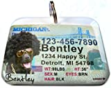 Michigan Driver License for Cats or Dogs by ID4Pet (Regular 1.5'' x 1.125'')