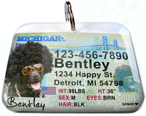 Michigan Driver License for Cats or Dogs by ID4Pet (Regular 1.5'' x 1.125'') by ID4Pet
