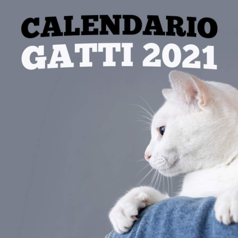 Calendario Gatti 2021 (Italian Edition): Edizione calendario