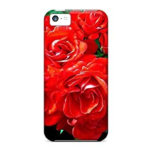 UpGMVLp1842asfzM Case Cover Protector For Iphone 5c For The Beauty Of Dn Case