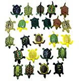 Mini Turtle Action Figure Play Set, Assorted Colors, 24 ct (2 sets of 12)- For Kids Miniature Party Favors, Bag Stuffers, Pinata Fillers, Prizes, Counting Educational, Sensory Toy