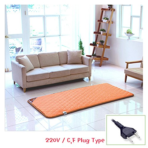 Electric Floor Mat (HanIl Phytonicide Wooden Floor Designed Heating Mat 220V Electric Warm Sheet (Single))