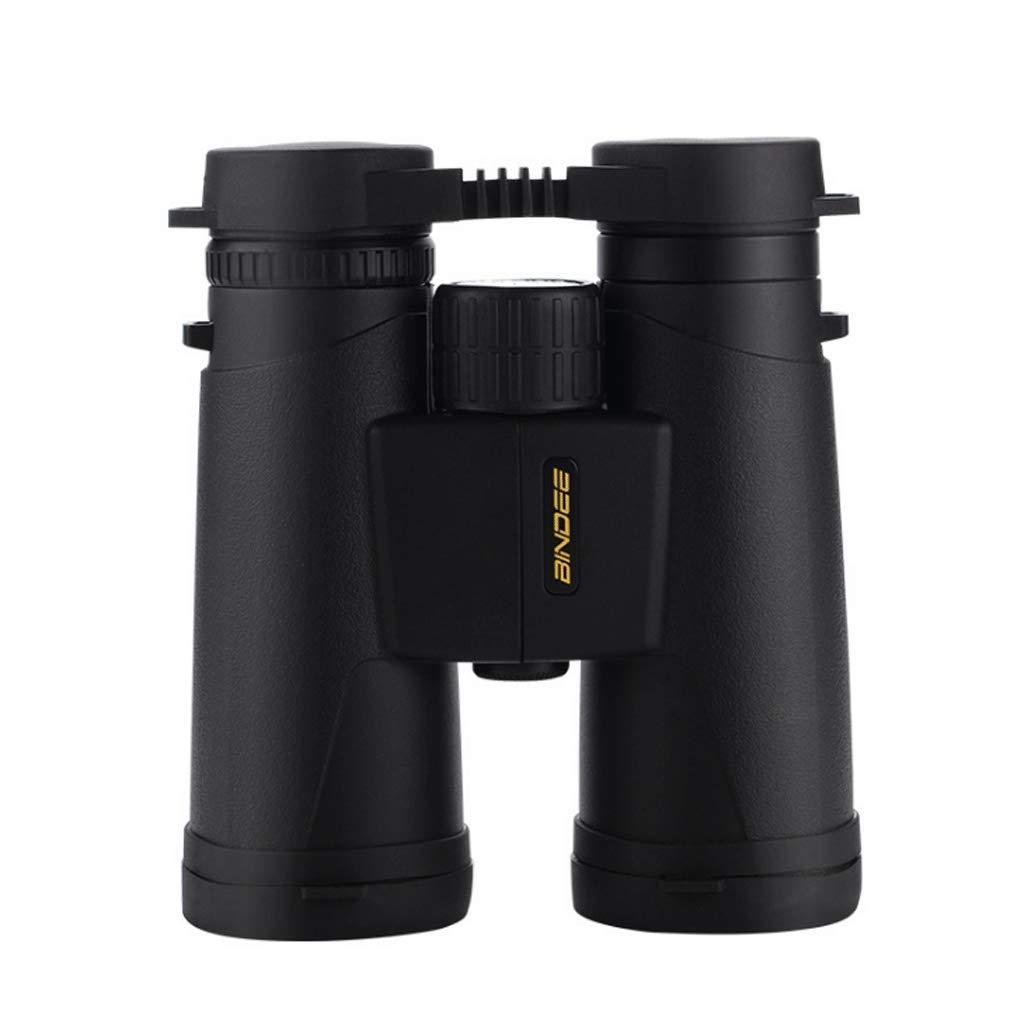 大人女性の 双眼鏡 : HD FMC 双眼鏡 アウトドア Lサイズ 直径 FMC コーティング 滑り止めデザイン -12×42 10×42 (カラー : 1#、サイズ : 10×42) B07GR7V1RQ, サニープライズ:8ff52eda --- a0267596.xsph.ru