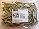 Eucalyptus Dried Leaves, 3 Oz (Non-irradiated, Non-GMO, Naturally Grown in USA)