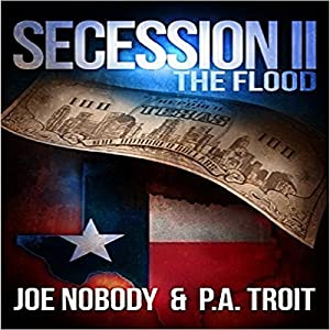 Secession II: The Flood Audiobook