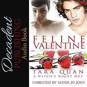 Feline Valentine Audiobook