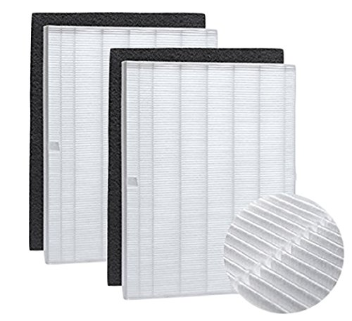 True HEPA Filter Replacement and Carbon Pre Filter Compatible with Winix 115115 PlasmaWave Size 21. Fits Model WAC5300, WAC5500, WAC6300, 5000, 5000b, 5300, 5500-2, P300, C535, 2 Sets