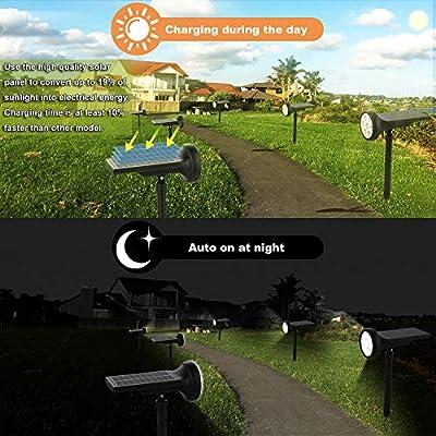 Esbaybulbs Solar Lights