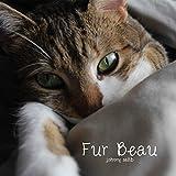 Fur Beau