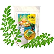 Organic Moringa Leaves Tea Pack of 30 Bags Large Tea Bags