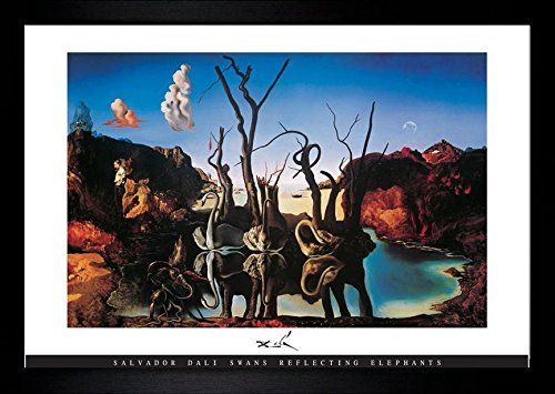 Swans Elephants Reflecting (buyartforless IF HG AP596 36x24 2 Black Gcoat Framed Swans Reflecting Elephants by Salvador Dali Gelcoat 36X24 Museum Art Print Poster)