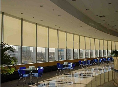 GOWE smart home used motorized blinds, motorized roller blinds, electric blinds,color:60cm wide