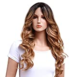 GOTTA Ombre Blonde Synthetic Wigs for Women 24'' Loose Wavy Ombre Wig Heat Reasistant Kanekalon Hair Replacement Wig for Women, Dark Brown to Honey Blonde(T4/27)