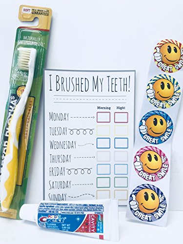 Doctor Plotkas Mouthwatchers Youth Yellow Antimicrobial Floss Bristle Silver Toothbrush, Toothpaste, Check Card, and Stickers, Childrens Gift Pack