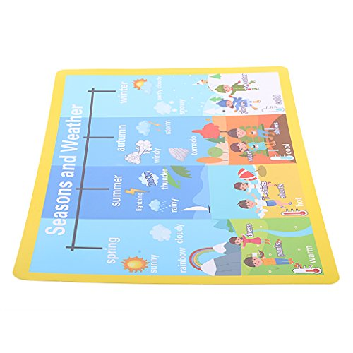 Educational Wall Posters Learning Picture Kids Toddlers Color Season Weather