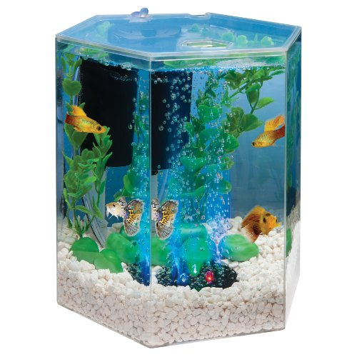 Tetra 29040 hexagon aquarium kit with led bubbler 1 for 20 gallon fish tank kit