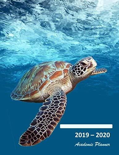 Lily Keepsake - 2019-2020 Academic planner: Aug 2019 - Sep 2020. Weekly planner. Sunday start week. With gratitude journal. Habit, mood/weather, water intake ... (Large). (Sea turtle underwater cover).