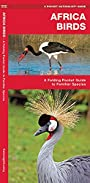 African Birds: A Folding Pocket Guide to Familiar Species (A Pocket Naturalist Guide)