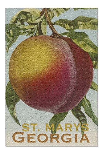 St. Marys, Georgia - Vintage Lithograph (20x30 Premium 1000 Piece Jigsaw Puzzle, Made in USA!)