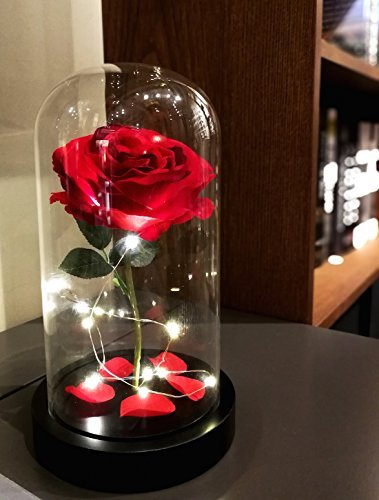 Homeseasons Enchanted Rose,Beauty and the Beast Red Rose, Pre-Lit Silk Rose in Glass Dome