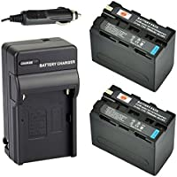 DSTE® 2x NP-F970 Battery + DC01 Travel and Car Charger Adapter for Sony DCM-M1 MVC-CD1000 HDR-FX1 DCR-VX2100E DSR-PD190P NEX-FS700RH HXR-NX3 Camera as NP-F930 NP-F950 NP-F960
