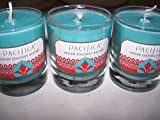Lot of 3 Pacifica Indian Coconut Nectar Soy Jar Candles 3 Oz Each (Scented)