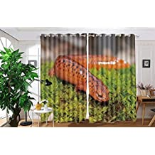 "vanfan 2 Panel Set Digital Printed Blackout Window Curtains for Bedroom Living Room Dining Room Kids Youth Room Window Drapes(W108x L63"", Northern Red Salamander Pseudotrit)"