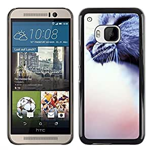Planetar® ( Yawn Roar Cat Grey House Blurry Peach ) HTC One M9 Fundas Cover Cubre Hard Case Cover