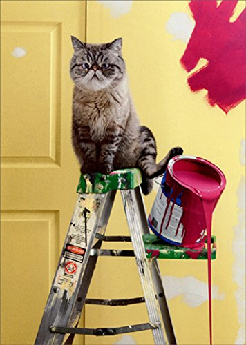 (Cat Tips Paint Can Avanti Funny New Home Congratulations Card)